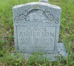 Junior Anderson