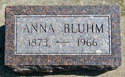 Anna Katherine <I>Nielsen</I> Bluhm