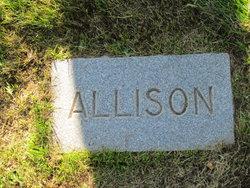 Allison G Andrews