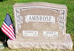 Jessie Faye <I>Snead</I> Ambrose