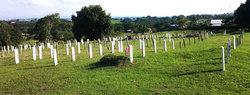 Spanish Lookout Mennonite Cemetery