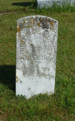 Augustus E Whitney