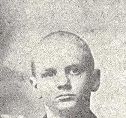 Alexander S Crane