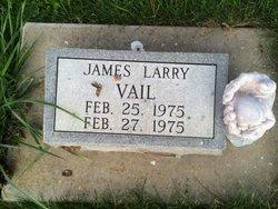James Larry Vail