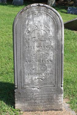 Susannah Warner