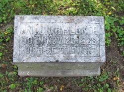 Anton H Luker