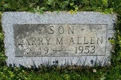 Larry M Allen