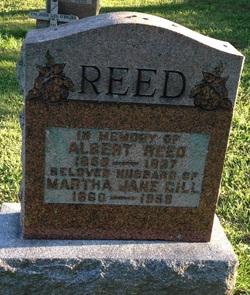 Albert Reed