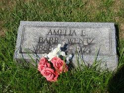 Amelia E. <I>Yohe</I> Wentz