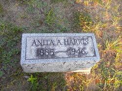 Anita A Harris