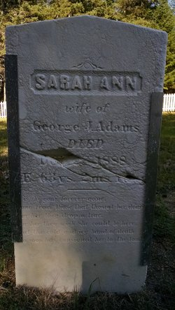Sarah A. Adams