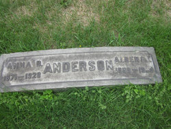 Albert T Anderson
