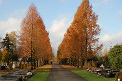 Hengelo Roman Catholic Cemetery