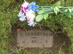 David Hermanus Bergstrom