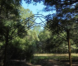 High Pine Cemetery