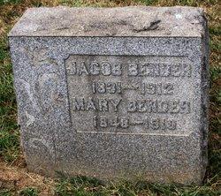 Mary Anna <I>Wirth</I> Bender
