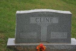 Homer Paul Cline