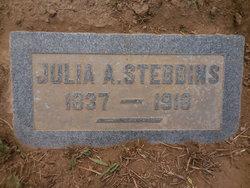 Julia A. Stebbins