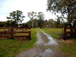 Bowning Cemetery