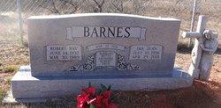 Robert Raymond Barnes