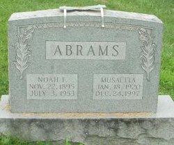 Noah Franklin Abrams