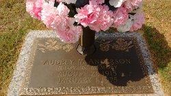 Audrey M Anderson