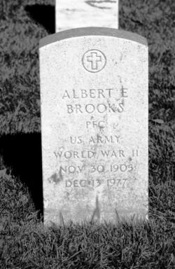 Albert E Brooks
