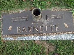 Sarah Faye <I>Sauls</I> Barnette