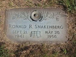 Ronald R. Snakenberg