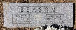 Barbara Elizabeth <I>Hamblen</I> Beason