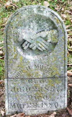 John Henry Murell