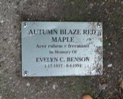 Evelyn C. Benson