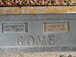 Amelia H. Gove