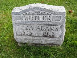 Eliza J. Adams