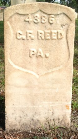 Chas F Reed