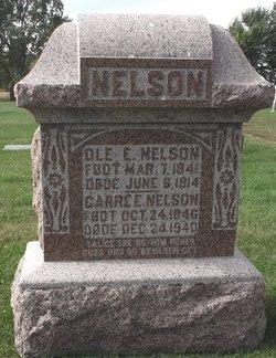 Ole E Nelson