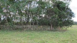 Whitescarver Family Cemetery