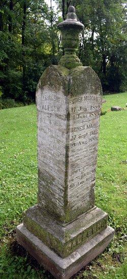 Rev Adolph Odin Alfsen