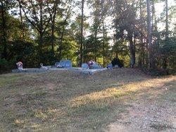 Springfield Baptist Church Cemetery 1