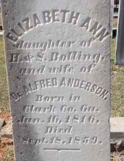 Elizabeth Ann <I>Bolling</I> Anderson