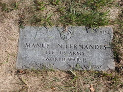 Manuel N Fernandes