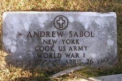 Andrew L Sabol