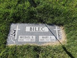 Michael B. Bilec