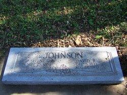 David R Johnson