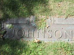 Evelyn V Johnson