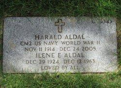 Ilene E Aldal