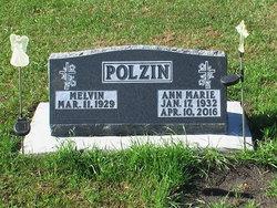 Ann Marie <I>Vogel</I> Polzin