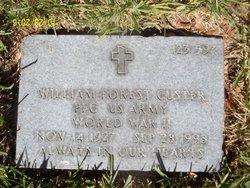 William Forest Custer
