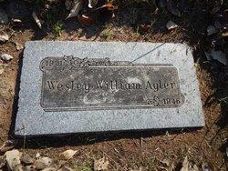 Wesley William Agler