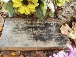 David Mitchell Campbell